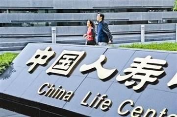 中国人寿:发挥保险优势 健全民生保障