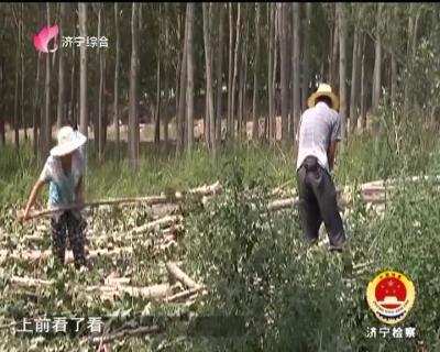 必威betway檢察-20181206