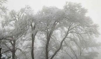 春运首日南方阴雨将缩减 北方霾散天气偏暖
