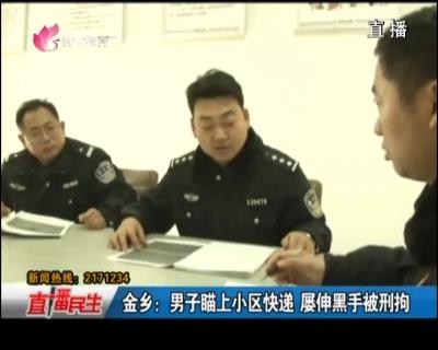 金乡:男子瞄上小区快递 屡伸黑手被刑拘