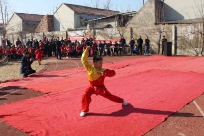 金乡:少年强则国强 中华武术进校园