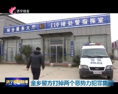 金乡警方打掉两个恶势力犯罪集团