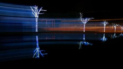 组图:火树银花不夜天 流光溢彩迎新年