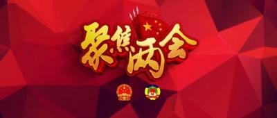 市人大代表岳耀方:挖掘历史文化资源 做传统文化践行者