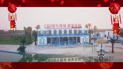 皇冠拍照恭祝全市人民新年快乐