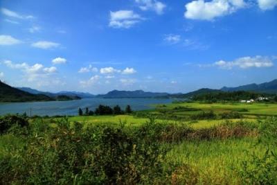 """山东新增10处""""国家湿地公园"""" 邹城太平国家湿地公园上榜"""