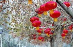 """腊月二十三高新区""""点亮""""春节夜景 这四处美景不容错过"""