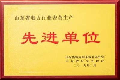 嘉祥县供电公司获山东省电力行业安全生产先进单位