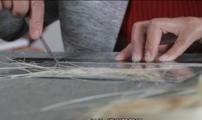文化传播微视频第二十七辑——芦苇画