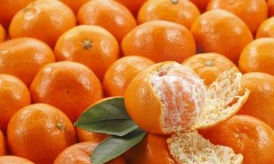 """橘子好吃,多吃易""""上火""""照旧""""败火""""?"""