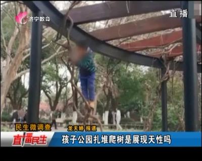 孩子公园扎堆爬树是展现天性吗