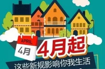 """4月新规来了!中小学建陪餐制 电动自行车实施""""新国标"""""""