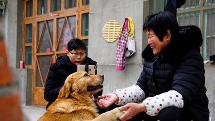 """嘉祥63岁""""我是赵姐"""":从农村网红到扶贫达人"""