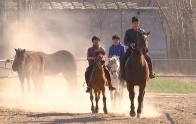 从羊倌到马倌,嘉祥小伙把马卖到了缅甸和朝鲜