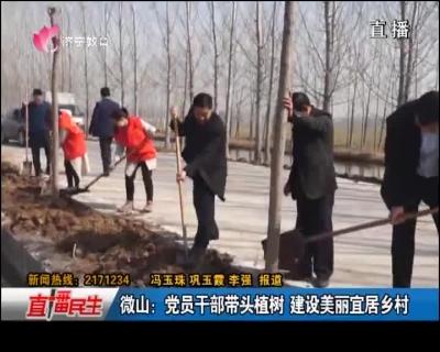 微山:党员干部带头植树 设置装备摆设优美宜居墟落