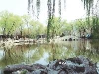 春到沂河好风光 随拍曲阜沂河公园大成桥