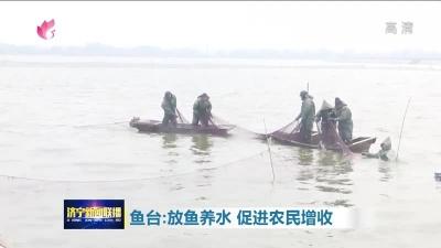 鱼台养殖户找到了新门道 健康绿色渔产品深受青睐