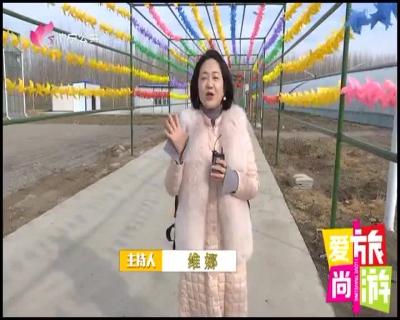 爱尚旅游 — 20190302