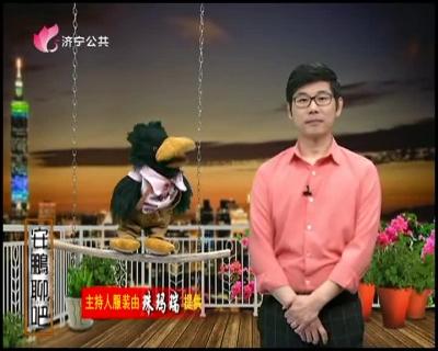 安鵬聊吧 — 20190419