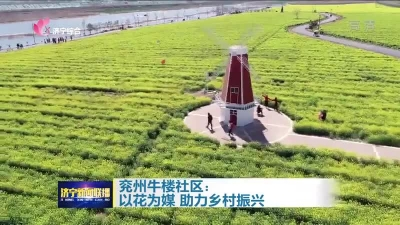 乡村振兴|兖州牛楼社区:以花为媒 助力乡村振兴