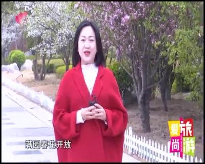 愛尚旅游 — 20190416