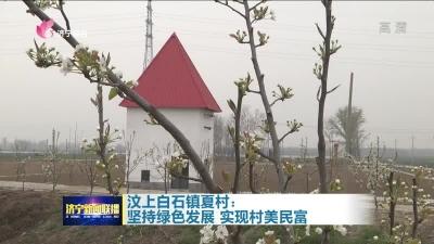 汶上白石鎮夏村:堅持綠色發展 實現村美民富