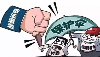 """扫黑除恶丨中纪委:干了这些事,你就是""""保护伞本伞""""!"""