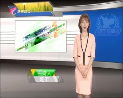 济宁农业 — 20190419