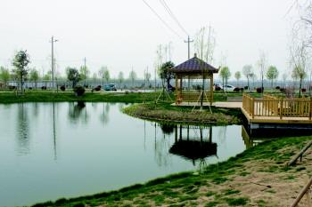 ?鄉村振興|王因街道劉村污水處理生態濕地項目啟用