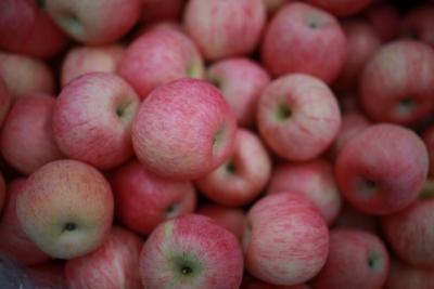"""""""蹿红""""的苹果:主产区减产果农惜售 二级市场助推"""