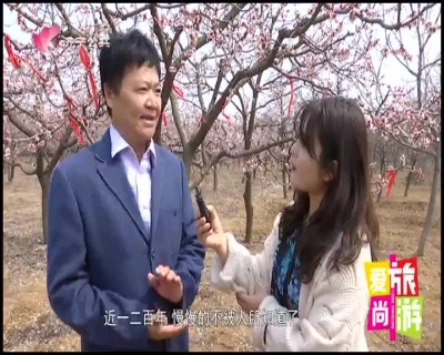 愛尚旅遊 — 20190419
