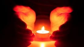 红色的蒲公英——悼凉山森林火灾牺牲的英雄