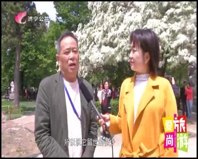 爱尚旅游 — 20190427