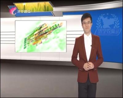 济宁农业 — 20190423