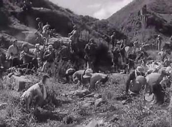 电影《平原游击队》