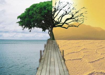 世界地球日|新華時評:我的!唯一而唯美的地球