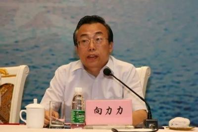 湖南省人大常委会副主任向力力被查!