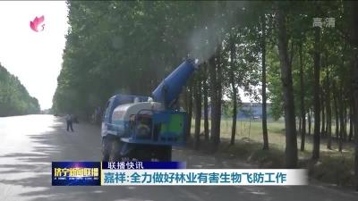 嘉祥已完成9万亩林业有害生物飞防作业