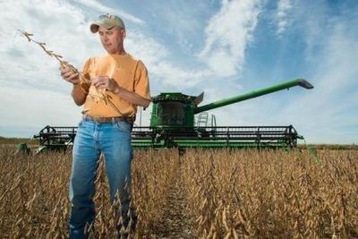 """算算""""关税账"""",美国农民损失有多大?"""
