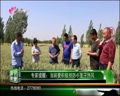 济宁农业 — 20190528