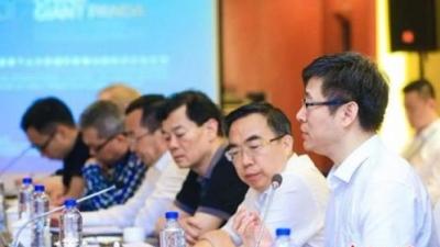 中国大熊猫国际形象6月将发布,中外人士座谈形象设计