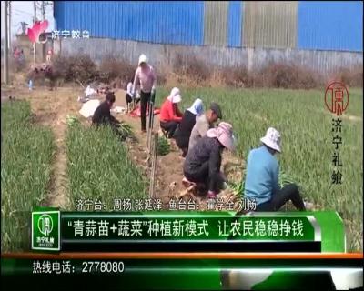 济宁农业 — 20190430