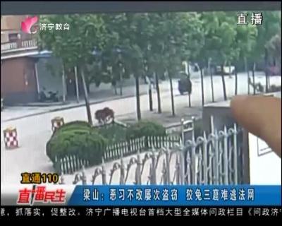 梁山:恶习不改屡次盗窃   狡兔三窟难逃法网