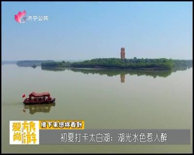 愛尚旅遊 — 20190517