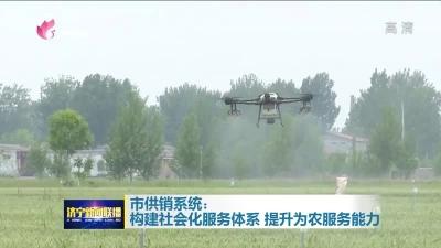 大动作!济宁整合100余架无人机组建飞防联盟