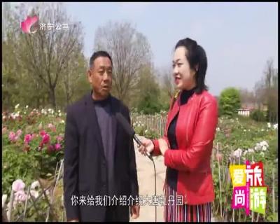 爱尚旅游 — 20190429