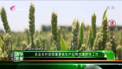 济宁农业 — 20190531