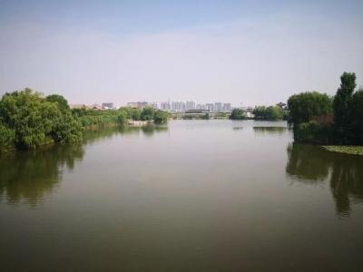 """2019年7月份济宁14县市区排名公布  金乡""""气质""""最佳"""