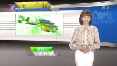 济宁农业 — 20190607