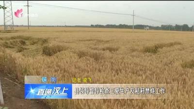 汶上:县领导督导检查三夏生产及秸秆禁烧工作